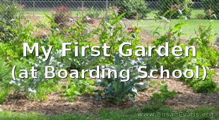 My First Garden At Boarding School