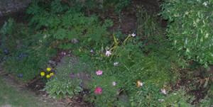 gardening-binder-4