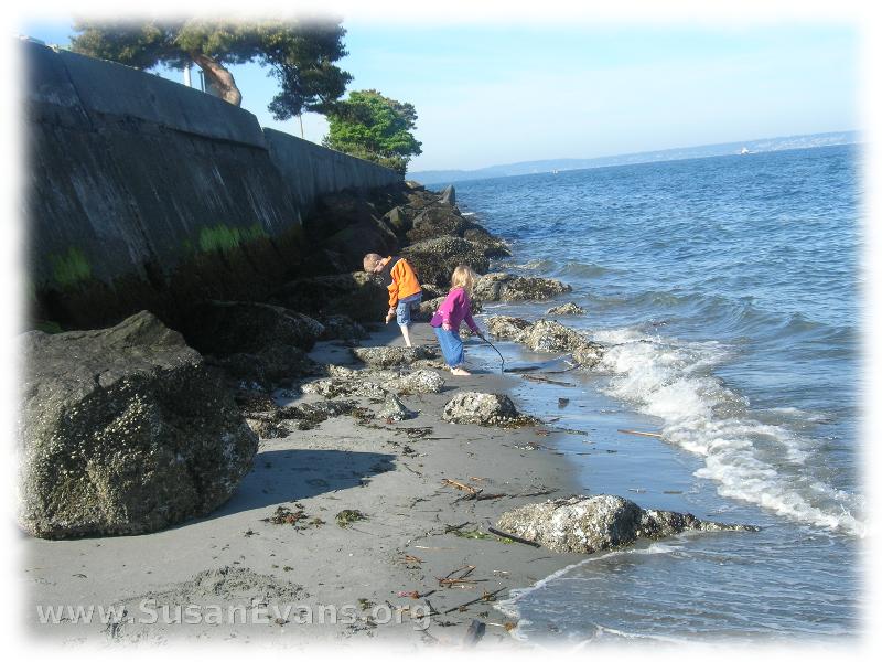 ocean-activities