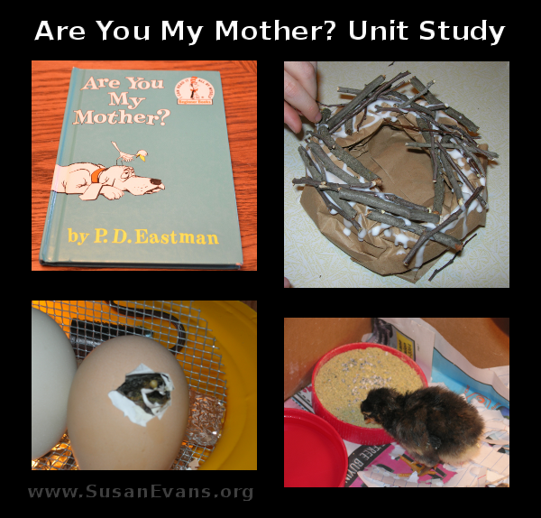 are-you-my-mother-unit-study