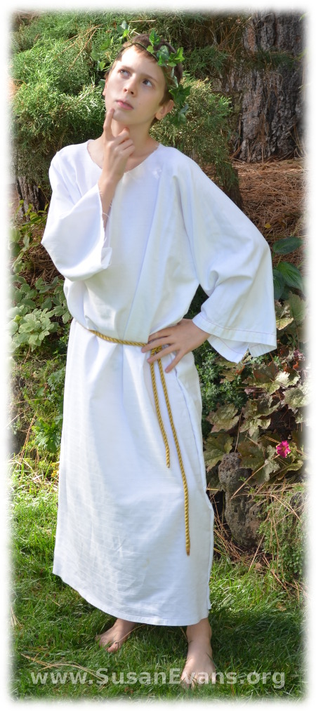Bible-costume-4 ...  sc 1 st  Susan Evans : jesus costumes homemade  - Germanpascual.Com