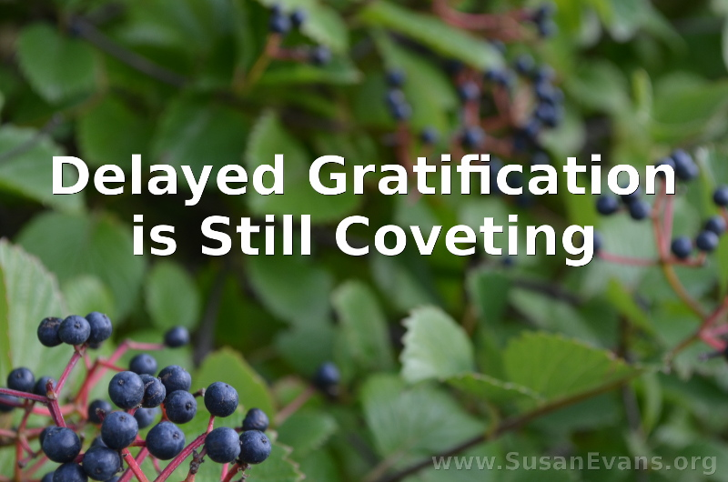 delayed-gratification-is-still-coveting