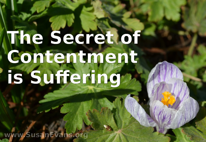 secret-of-contentment-is-suffering
