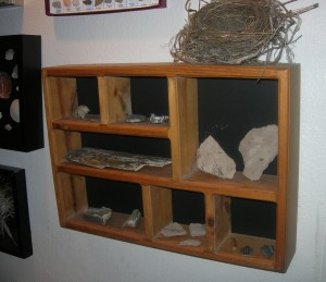 nature-display-ideas