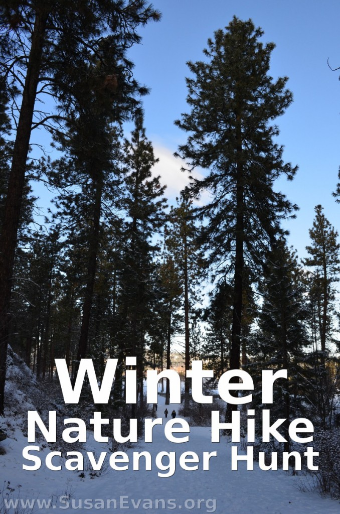 winter-nature-hike