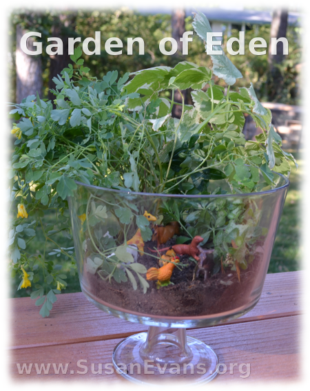 garden-of-eden-terrarium