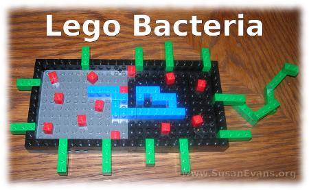 lego-bacteria