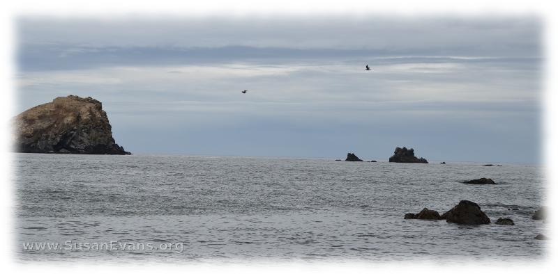 ocean-scene
