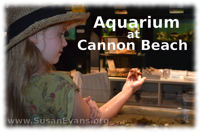 aquarium-at-cannon-beach
