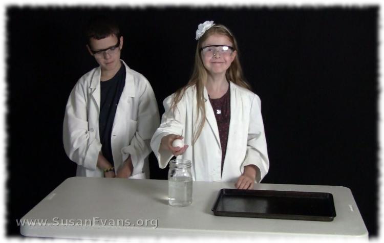egg-experiments-2