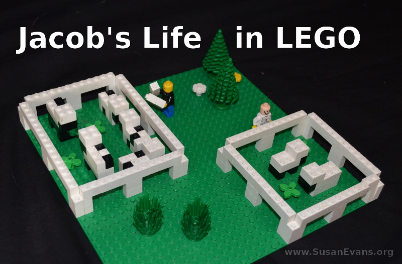 jacob's-life-in-lego