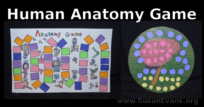 human-anatomy-game