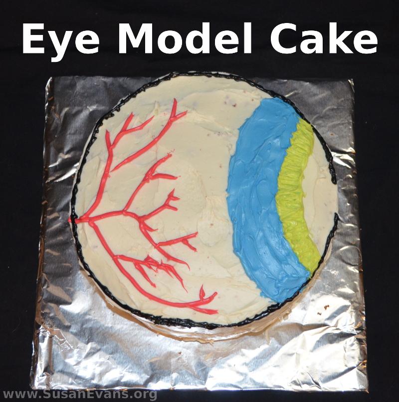 eye-model-cake