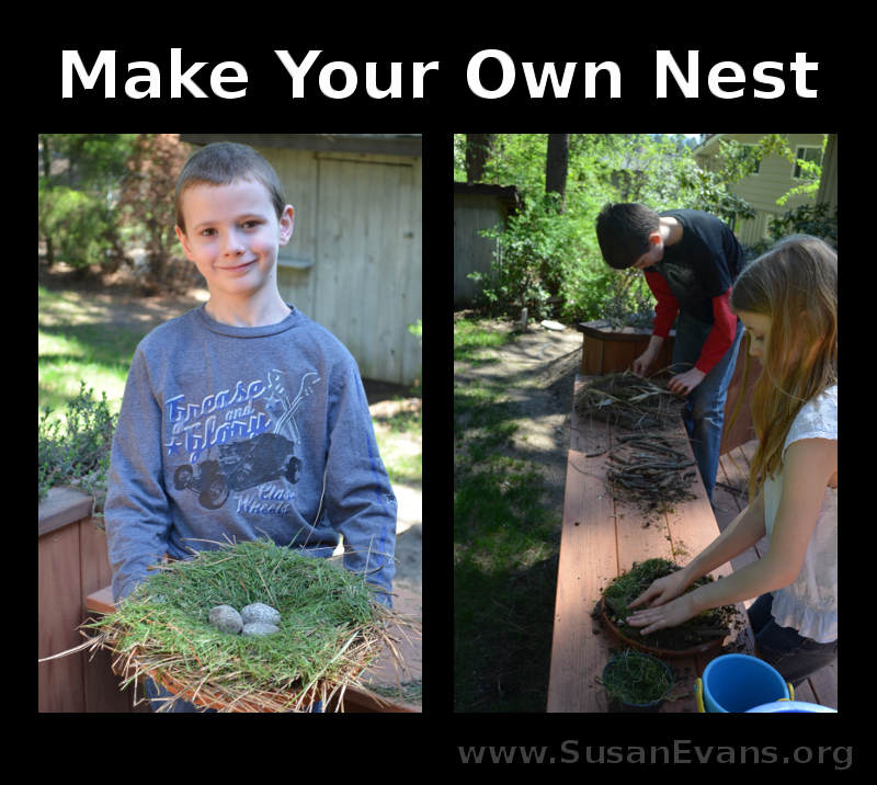 make-your-own-nest
