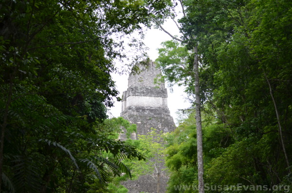 top-of-tikal