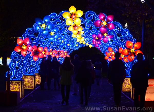 flower-lantern-canopy