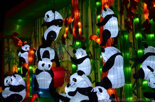 panda-lanterns