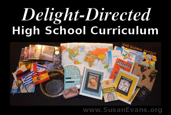 delight-directed-high-school-curriculum