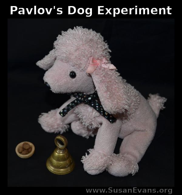 pavlovs-dog-experiment