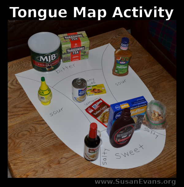 tongue-map-activity